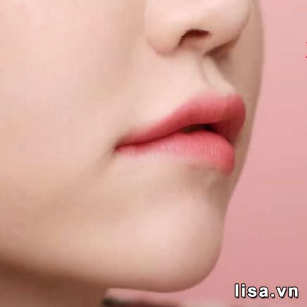 Sức hút khó cưỡng của Black Rouge Rose Velvet Lipstick R05