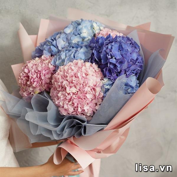 Tặng quà sinh nhật cho người yêu cũ? Hãy tặng Cẩm tú cầu - Loài hoa của lời xin lỗi