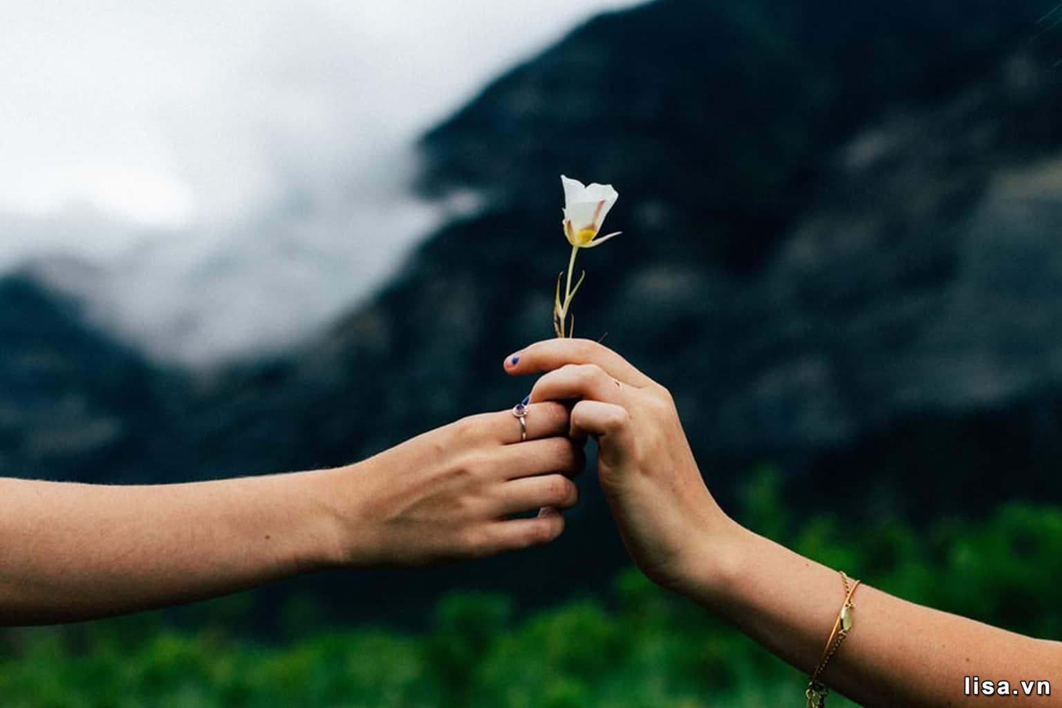 Tha thứ cho nhau mới là món quà tuyệt vời nhất!