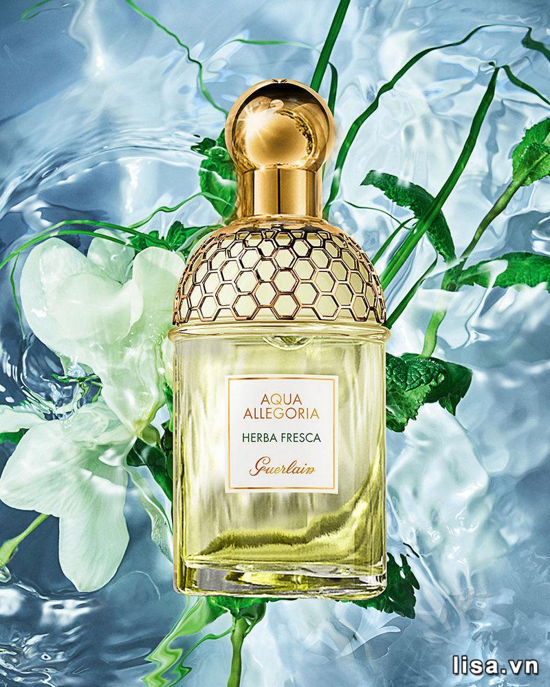 Nước hoa cho mùa hè mùi hương bạc hà là lựa chọn tuyệt vời cho những ngày nóng bức